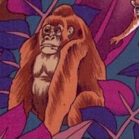 Exotica - Jungle Animals in the Wild