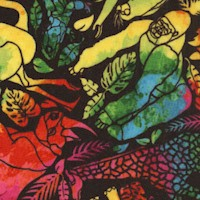 Just for Fun - Exotic Rainbow Jungle by Jason Yenter