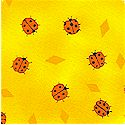 AN-ladybugs-L509