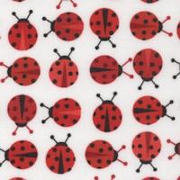 AN-ladybugs-R657