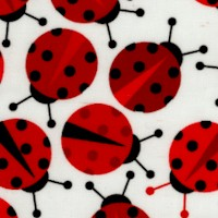 Urban Zoology - Tossed Ladybugs on Ivory