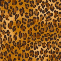 Leopard Skin #4