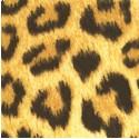 AN-leopard-S21