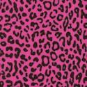 It Girls - Leopard Skin on Hot Pink