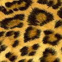 Plains of Africa - Leopard Skin