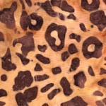 Kalahari Leopard Skin