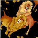 AN-lions-A535