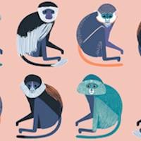 Bwindi Forest - Rows of Monkeys by Katy Tanis