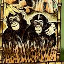 AN-monkeys-S801