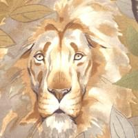 Exotica - Kendi Safari #2