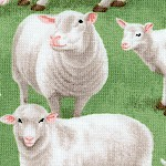 AN-sheep-W51