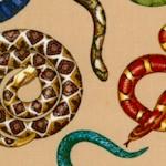 AN-snakes-W331