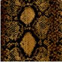 AN-snakeskin-P969