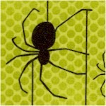 AN-spiders-Y249