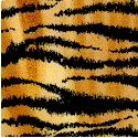 AN-tiger-P799