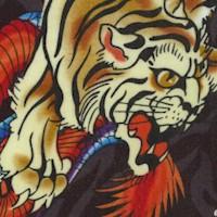 AN-tigers-R536
