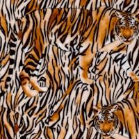 AN-tigers-R6629