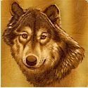 Lobo - Realistic Wolf Portraits on FLANNEL