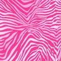 Pink Zebra Skin- BACK IN STOCK!