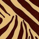 Zebe - Zebra Skin up Close