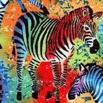 AN-zebras-X258