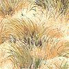 MISC-dunes-K957