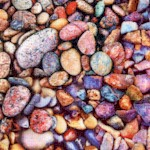 The Potted Garden - Colorful Pebbles Up Close