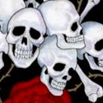 Skulls and Roses on Black