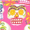 Mini Calaveras on Pink
