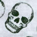 MISC-skulls-W564