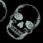 Tossed Silver Metallic Skulls on Black