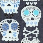 MISC-skulls-X55