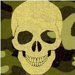 Gold Metallic Skulls on a Camouflage Background