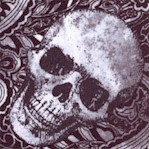 Wicked- Tossed Skulls on Paisley