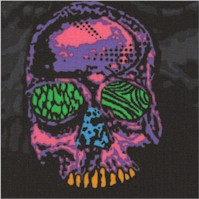 Head Trip - Psychedelic Skulls on Black