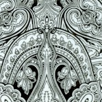 Monochrome Black and White Paisley by Jinny Beyer