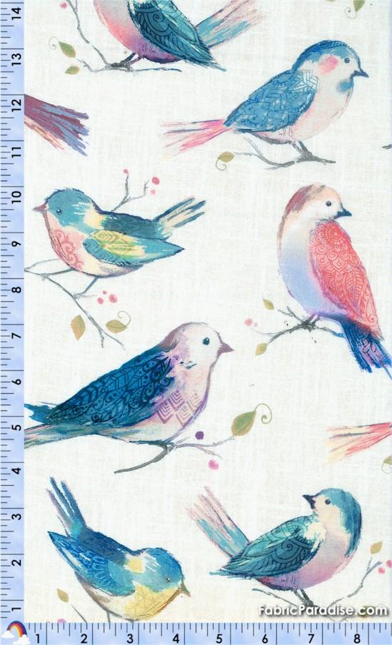 BI-birds-Y150