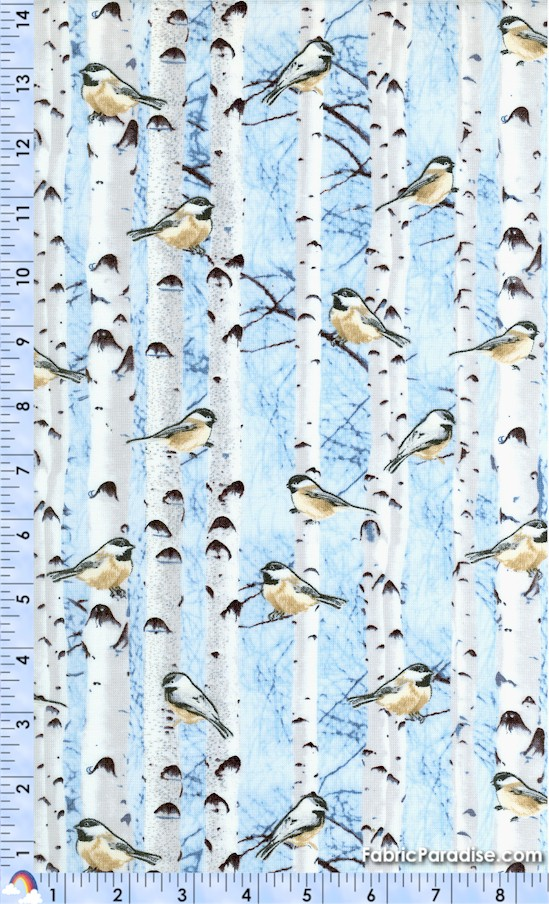 BI-birds-Y20
