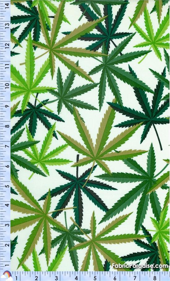 FLO-cannabis-Y6
