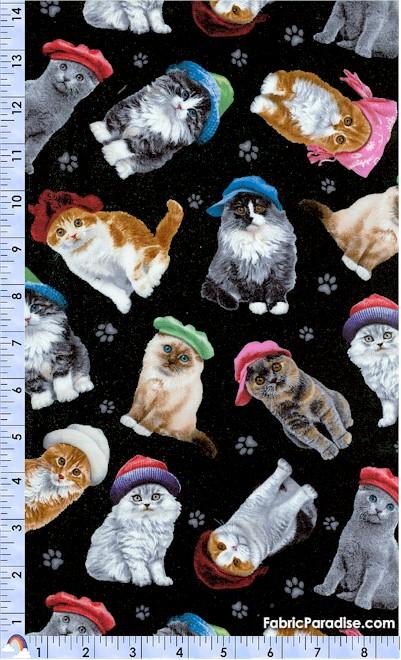CAT-cats-S7
