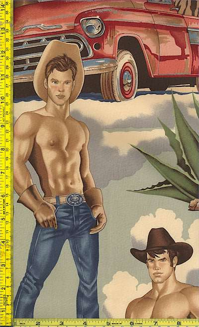 SW-cowboys-H647
