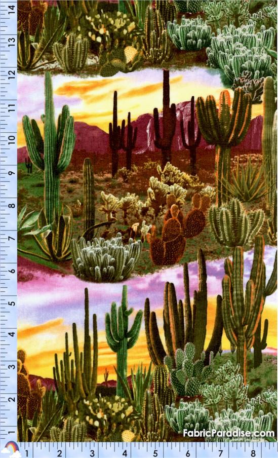 SW-desert-Y277