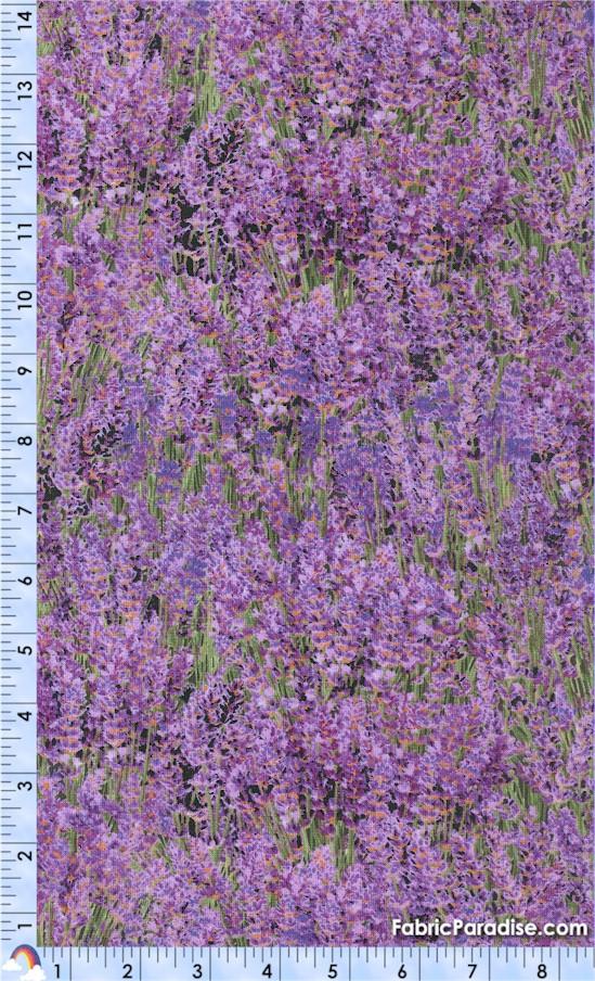 FLO-lavender-Y45