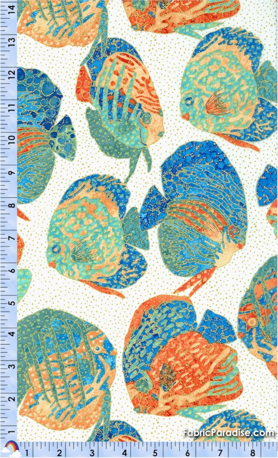 FISH-oasis-Y146