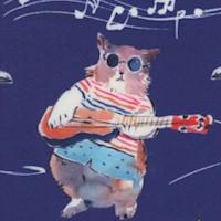 Hip Cat Rehearsal (Digital)