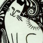 CAT-cats-Y475