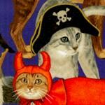 CAT-cats-Y828