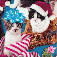 Holiday Friends - Mischievous Christmas Cats
