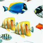 Coral Reef -  Digital Real Salt Water and Marine Fish on Ivory