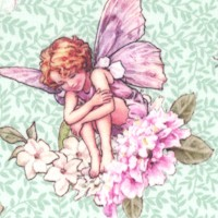 Songs of the Flower Fairies - The Dancing Flower Fairies on Green